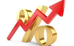 Vượt kế hoạch lợi nhuận, Địa ốc Đất Xanh điều chỉnh trả cổ tức từ 15% lên 18%