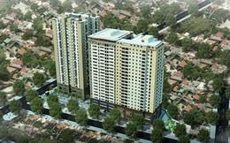 Chủ tịch HĐQT - TGĐ Công ty VIDEC Trần Đức Huế: Sản phẩm của VIDEC chinh phục thị trường bất động sản như thế nào?