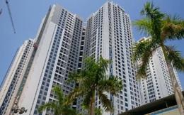 Thị trường căn hộ đầu năm: Xu hướng đề cao chất lượng dịch vụ quản lý, vận hành