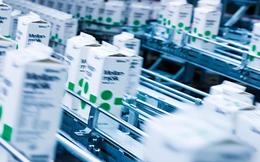 Ngành sữa Việt Nam tăng trưởng tạo cơ hội phát triển cho doanh nghiệp bao bì
