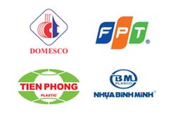 Quá hạn công bố giá khởi điểm, SCIC lùi thời điểm bán vốn tại NTP, BMP, FPT