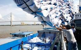 Xuất khẩu gạo chuyển từ lượng sang chất