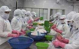 Xuất khẩu cá khô sang Indonesia phải đi đường vòng