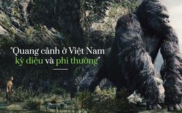 """Cùng với """"Kong: Đảo đầu lâu""""...FLC, Vingroup đang nâng Quảng Bình lên một tầm cao mới"""