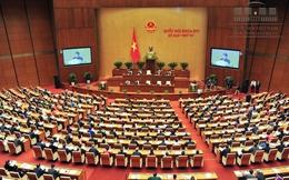 Quốc hội nghe báo cáo về Dự án thu hồi đất Cảng hàng không quốc tế Long Thành