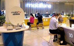 Lợi nhuận 2016 của Mobifone giảm 27%, AVG báo lãi 54 tỷ