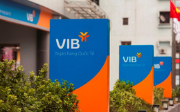 VIB xin ý kiến cổ đông trích 700 tỷ đồng từ lợi nhuận năm 2017 để bổ sung vốn cấp 1