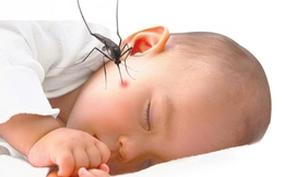 Người dân đổ xô mua thuốc chống muỗi cho trẻ: Dùng sai, không hiệu quả