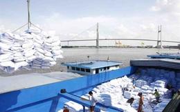 Nhiều thị trường chuẩn bị nhập khẩu gạo số lượng lớn