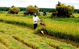 Hơn 300 nghìn tỷ tái cơ cấu nông nghiệp trong 4 năm tới