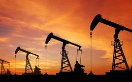 Mỹ bắn tên lửa Tomahawk vào Syria, cổ phiếu dầu khí Việt Nam nhanh chân vụt tăng trong phiên cuối tuần