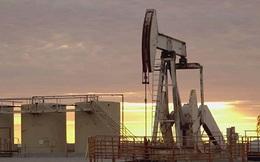Bao giờ thị trường dầu mỏ mới tái cân bằng?