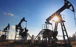 Giá dầu thô tăng vọt 5% trong tuần