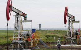 OPEC còn đủ khả năng kiểm soát giá dầu?