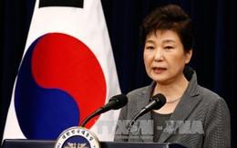 Tối nay bà Park Geun-hye rời phủ tổng thống Hàn Quốc