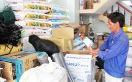 Nhu cầu tiêu thụ phân bón tại Việt Nam lên tới 11 triệu tấn/năm