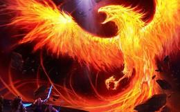 """Xiaomi - chú """"phượng hoàng Trung Hoa"""" đã hồi sinh phi thường bằng những chiến lược đúng đắn như thế nào?"""