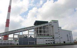 Phát hiện bể chứa bùn thải hôi khủng khiếp ở nhà máy giấy Lee & Man