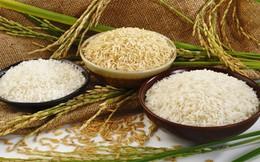 Xuất khẩu gạo tăng mạnh cả lượng và giá trị