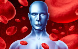 Máu không được thanh lọc là nguyên nhân gây bệnh: 7 thực phẩm giúp thanh lọc máu tốt nhất