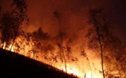 Cháy rừng trong đêm ở Thanh Hóa, hàng trăm người tham gia dập lửa