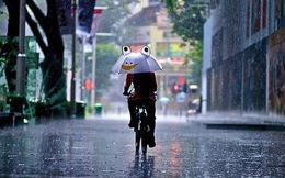 Hà Nội mưa hết tuần tới, có gió giật mạnh