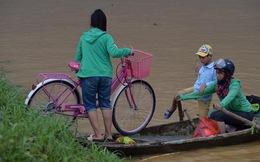 Chùm ảnh: Ninh Bình nhiều nơi nước ngập quá 2m, đường vào khu du lịch Bái Đính bị cô lập