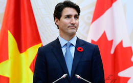 Bạn sẽ ngạc nhiên khi biết bông hoa đỏ cài áo Thủ tướng Justin Trudeau và câu chuyện lịch sử đằng sau