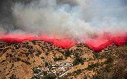 """Mỹ: Los Angeles """"gồng mình"""" trước vụ cháy rừng lịch sử"""