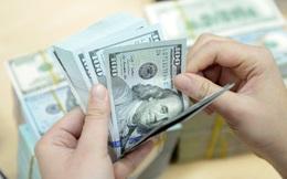 Năm 2017, Chính phủ vay 342 nghìn tỷ, chi trả nợ 260 nghìn tỷ