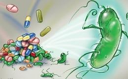 Vi khuẩn HP gây bệnh dạ dày đã kháng với nhiều loại kháng sinh