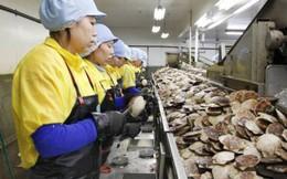 Nghịch lý tại Nhật Bản: Nhân viên không thích được tăng lương