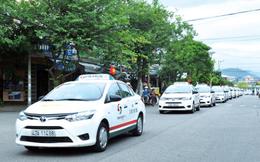 Cổ phiếu VNS giảm sâu, vợ Chủ tịch Đặng Phước Thành tranh thủ bắt đáy
