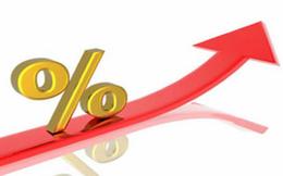 Cổ phiếu PXL tăng mạnh, Ủy viên HĐQT đăng ký bán hơn 5,5 triệu cổ phiếu