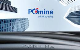 Pomina (POM): Giá vốn giảm sâu, quý 2 lãi 250 tỷ đồng, nâng tổng LNST 9 tháng đầu năm lên hơn 514 tỷ đồng