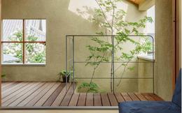 Cách thiết kế ấn tượng ngôi nhà ống 2 tầng của người Nhật