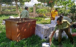 Gia Lai: Xử phạt hơn 140 cơ sở kinh doanh thực phẩm giả