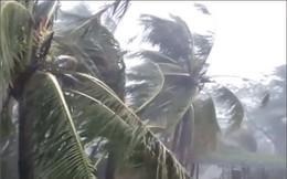 Video bão số 10 gây mưa to, gió giật mạnh ở Quảng Trị