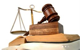 Liên tục giao dịch cổ phiếu MBG mà không báo cáo, một cá nhân bị phạt đến 92,5 triệu đồng