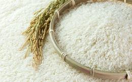 Sri Lanka mời thầu quốc tế nhập khẩu 200.000 tấn gạo