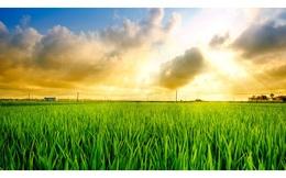 6 điểm nhấn lớn trong bức tranh ngành nông nghiệp Việt Nam
