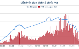 Chia tách cổ phiếu, tại sao ROS vẫn không ngừng tăng?