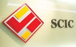 SCIC tổ chức Roadshow bán vốn cổ phần VCG, FPT, BMP, NTP, DMC trong ngày 16-17/11