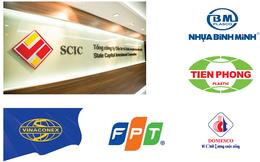 Tâm điểm bán vốn SCIC cuối năm: VCG, FPT, BMP, NTP, DMC liệu có 'nuột' như Vinamilk?