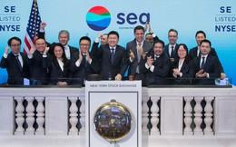 Lỗ nặng nhưng vẫn IPO thành công rực rỡ và được định giá 5,3 tỷ USD, startup thuộc hàng lớn nhất ở Đông Nam Á có gì đặc biệt?