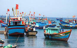 Ngăn chặn tình trạng khai thác hải sản trái phép ở vùng biển nước ngoài