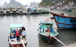 Xử lý tàu thuyền không đăng ký, đăng kiểm vì sao khó thực hiện?
