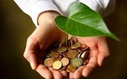 CNG Việt Nam quyết định tạm ứng cổ tức bằng tiền tỷ lệ 30%