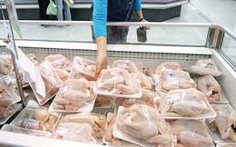 Thịt gà nhập khẩu giá trung bình 20 nghìn đồng/kg
