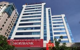 Agribank đang nắm vốn tại những ngân hàng nào?